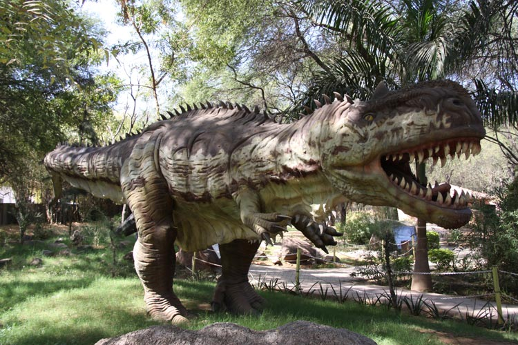 Indroda Nature and Dinosaur Fossil Park