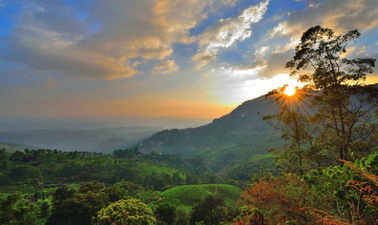 one-day-trip-munnar-pothamedu-view-point