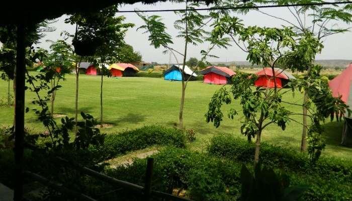 Camp-Mustang-Gurgaon
