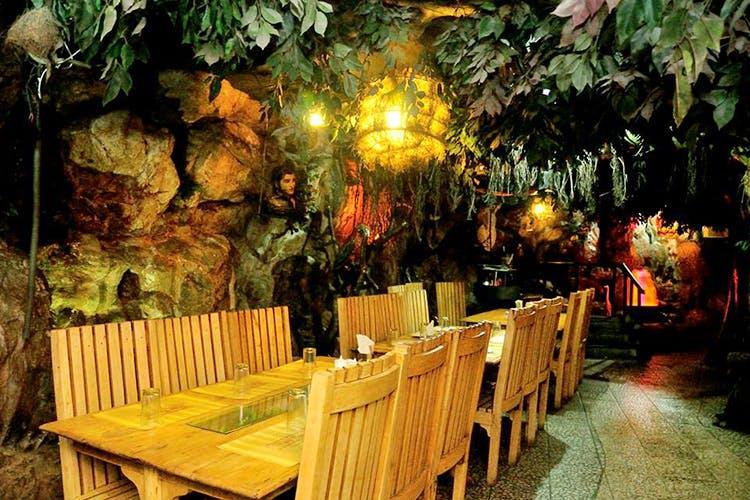 Rain Forest in Chennai