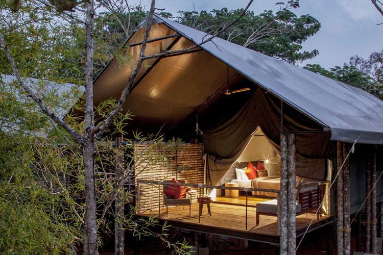 Kaav Safari Lodge- Best for Staycation