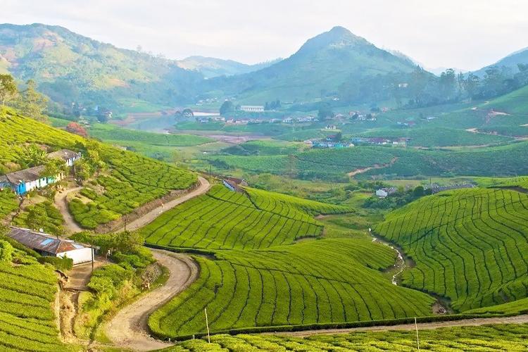 honeymoon-places-near-chennai-meghamalai