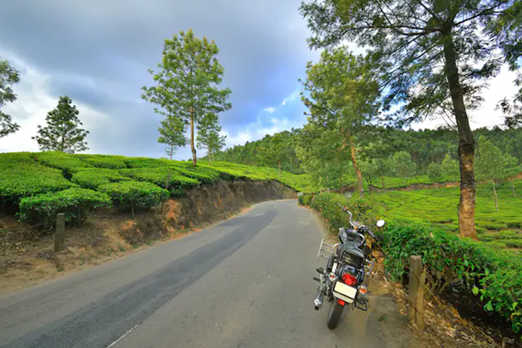 honeymoon-places-near-Chennai-ooty
