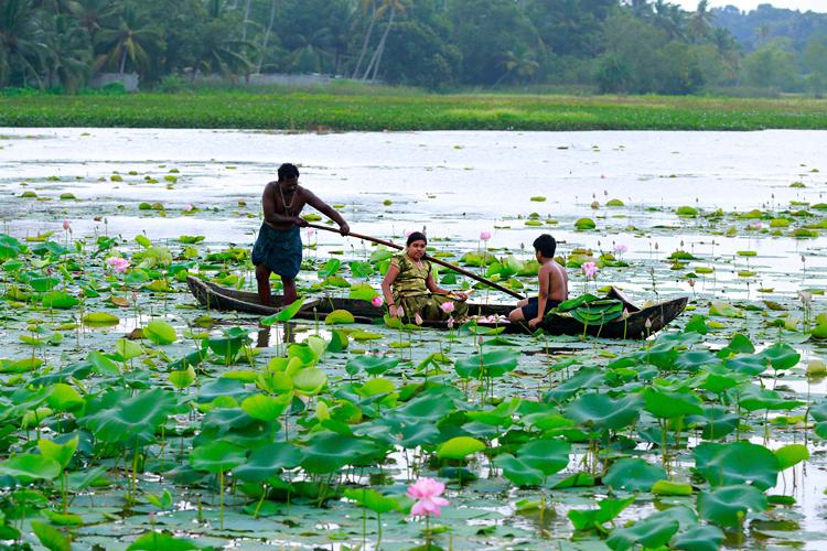 Vellayani-Lake